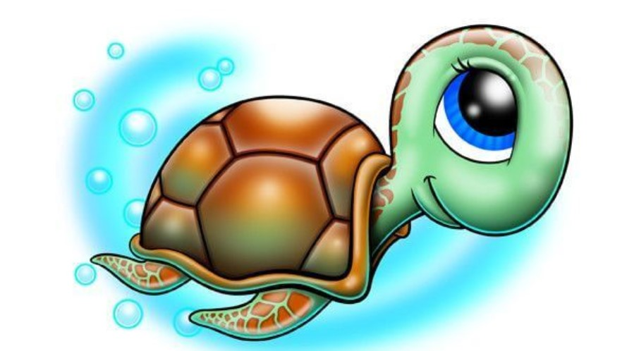 14 Cartoon Turtle Tattoo Ideas Petpress